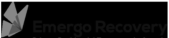 emergo-logo_2x.png
