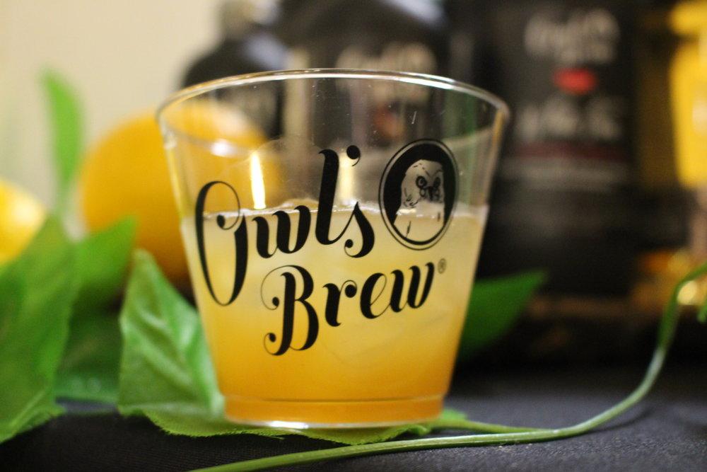 Owls Brew