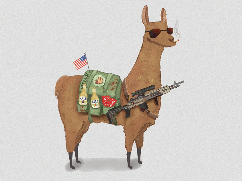 Llama illustrated for  MrMoonsHouse