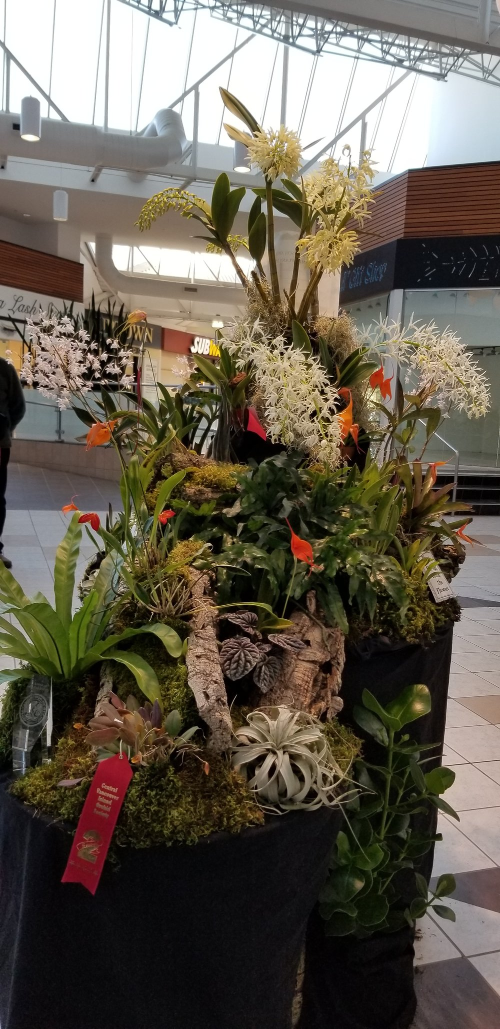 Bryan Emery's Award winning display