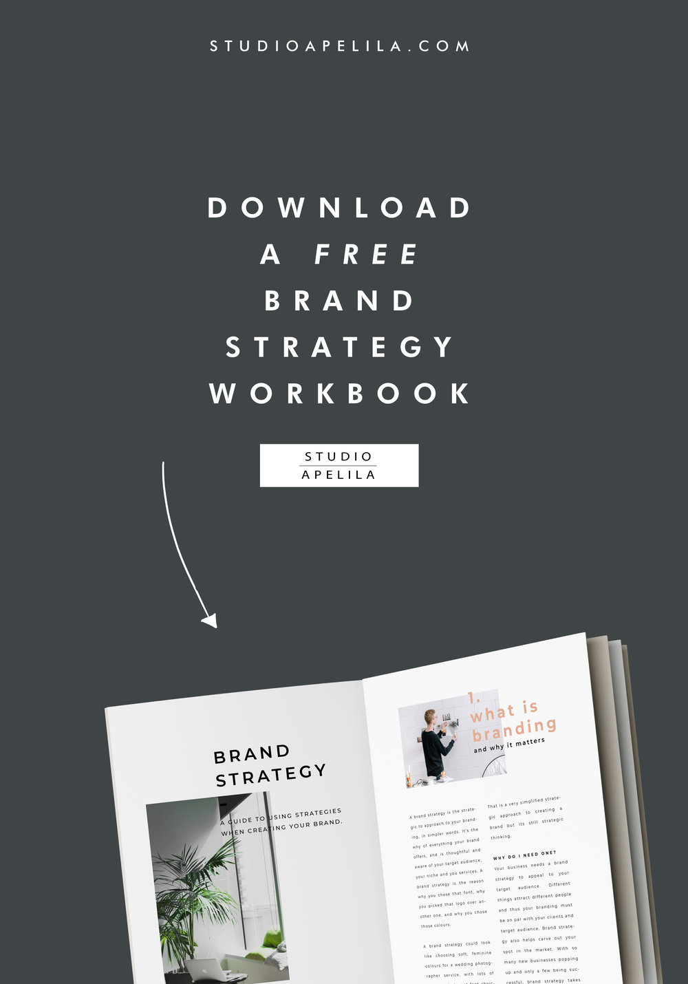 Brand Strategy Workbook Ad.jpg