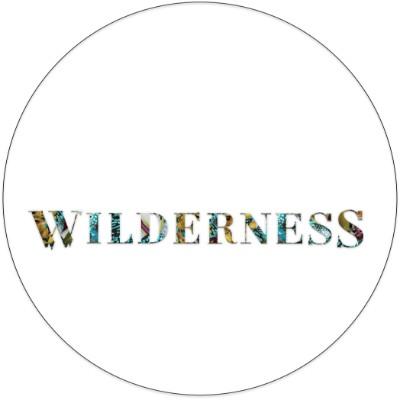 wilderness-festival-logo.jpg