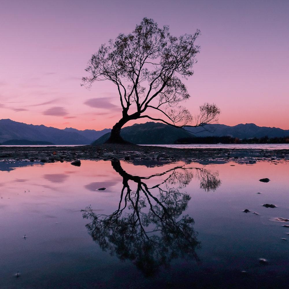 Edd Cope - New Zealand