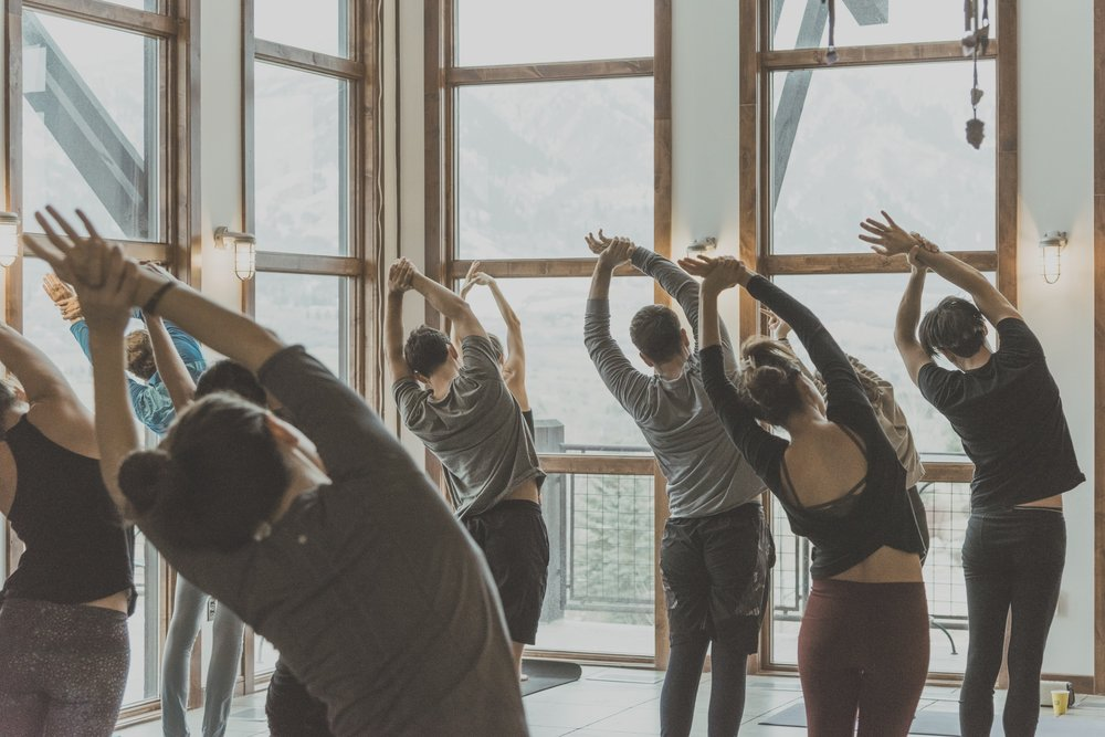 - yoga & Wellness