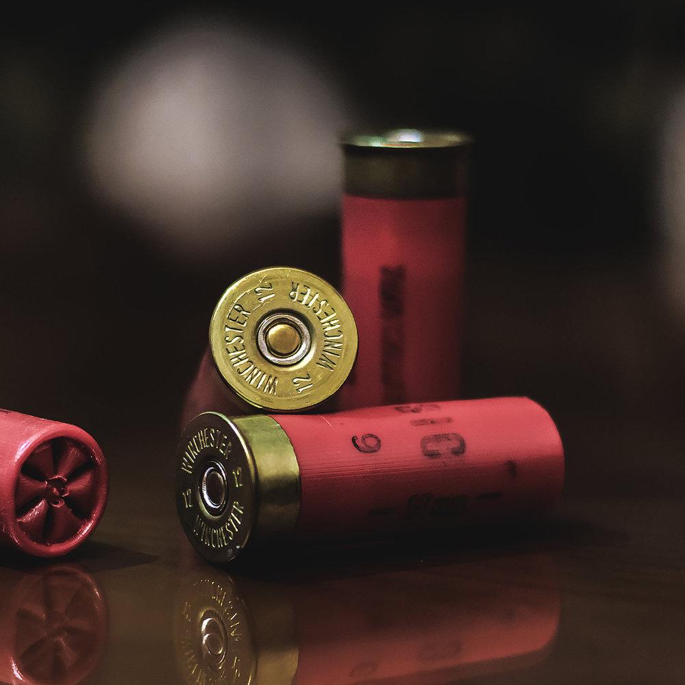 no firearmsNo HUnting -