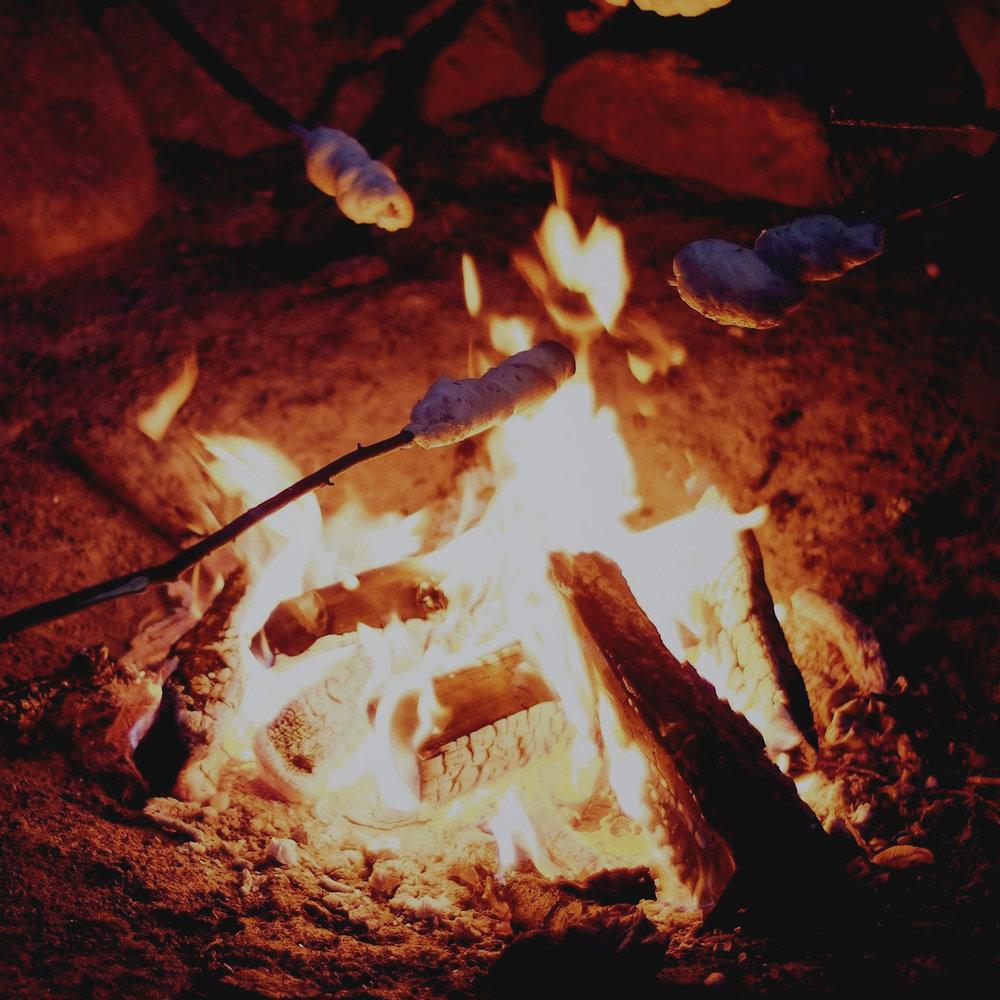 Build a campfire -