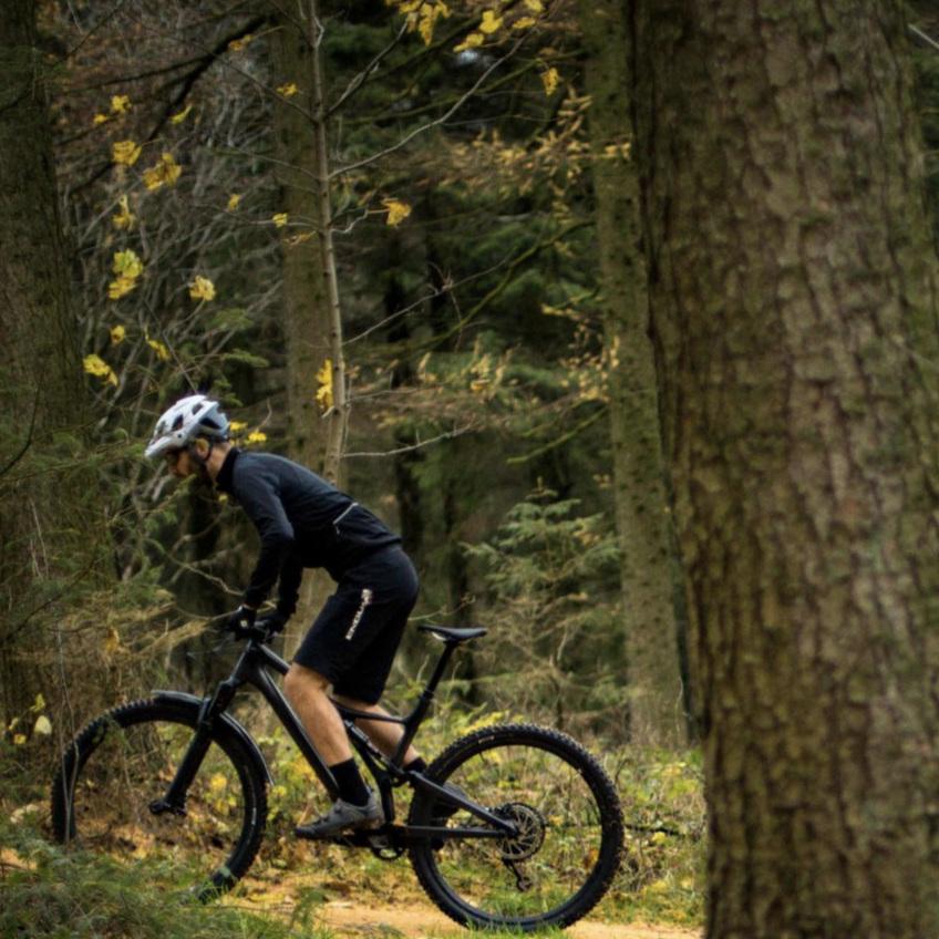 Mountain Bike -