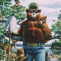 *Click here Smokey Bear's fire safety advice.