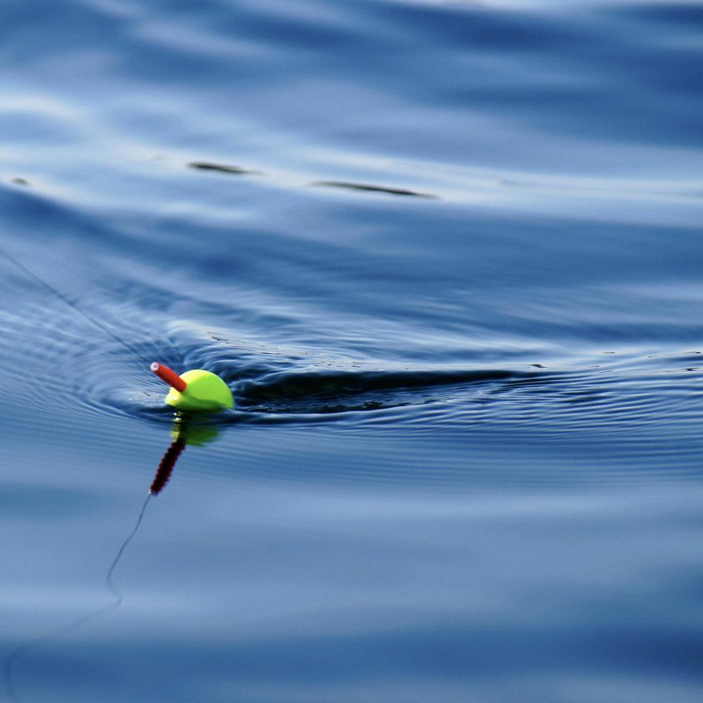 No bait fishing -