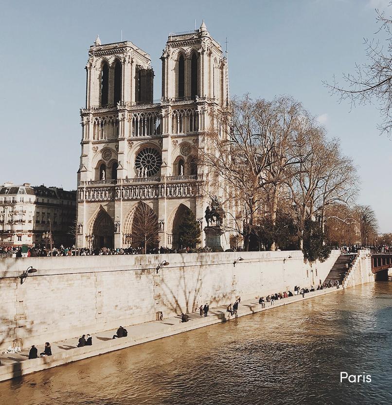 Paris_Testimonial.jpg