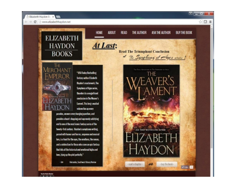This WebSite was built to showcase the author's new publication. There is a link that goes directly to the books first page. The visitors can them click through the pages of the first chapter and read. At the end of the chapter they are taken to a link that will prompt them to buy the book.      This site has been archived and is currently off line.