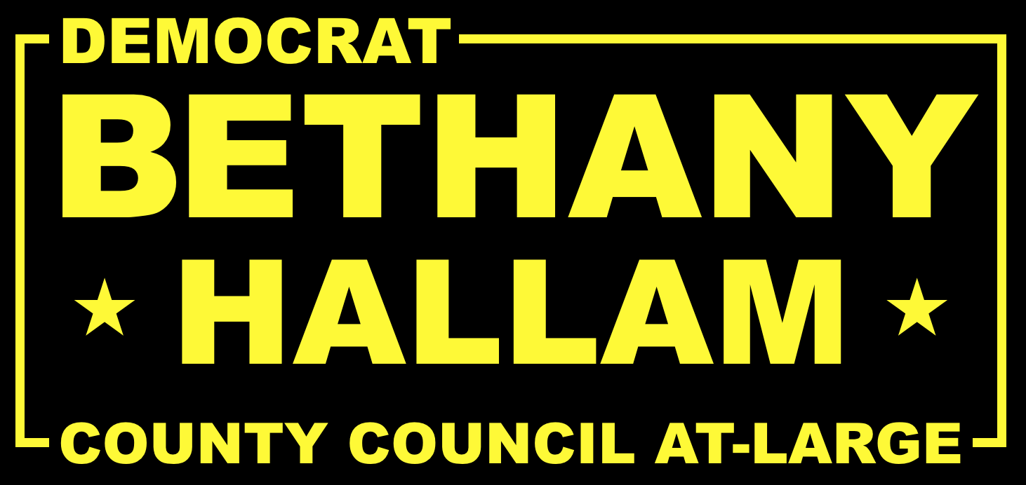 Bethany Hallam for Allegheny County Council