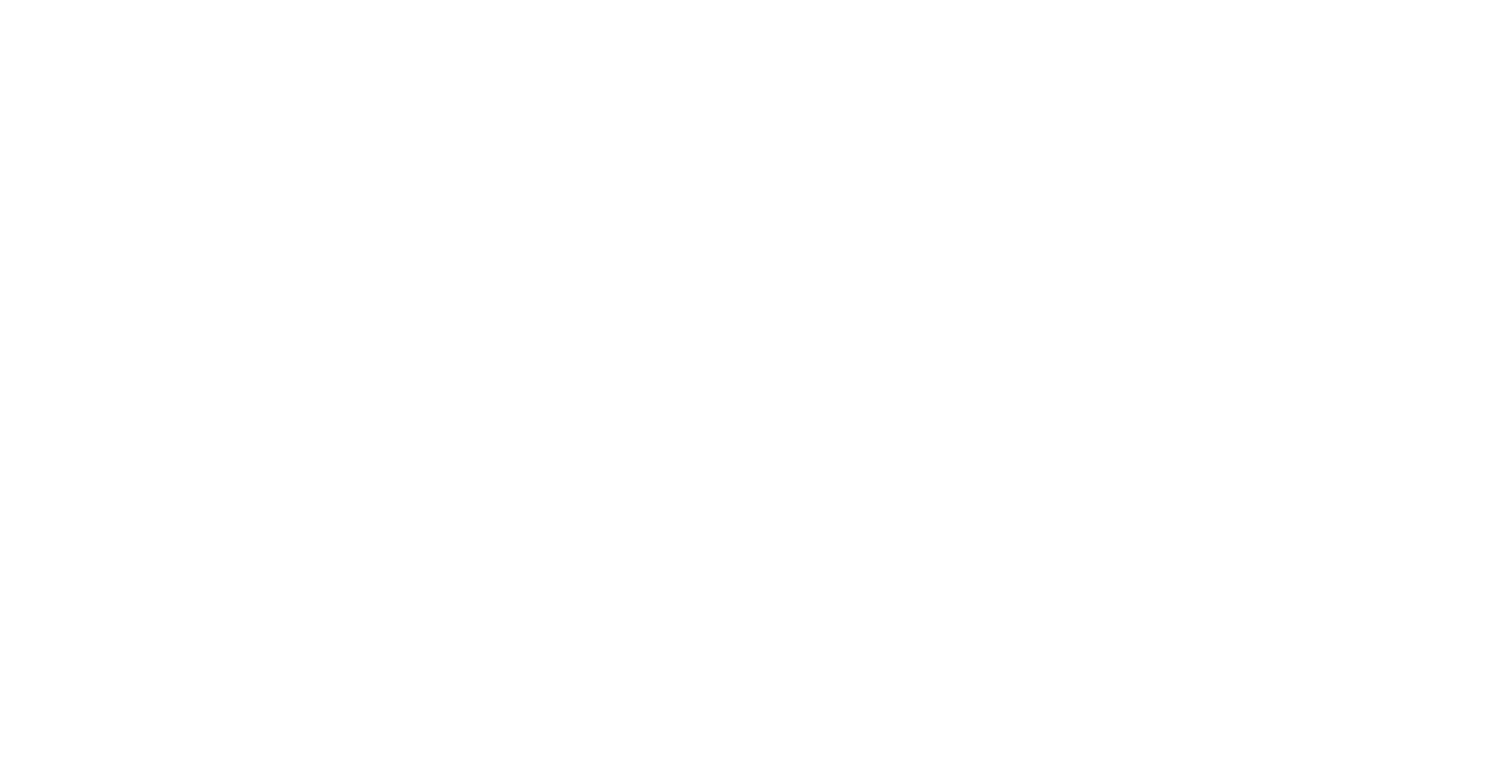 msm studio group