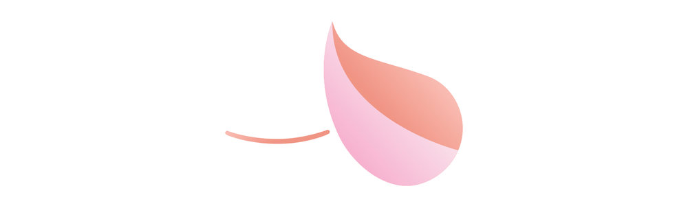 Breast Reconstruction Surgery Gold Coast Breast and Endocrine Surgery.