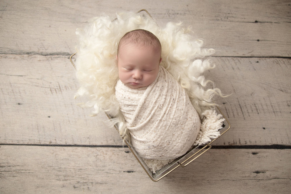 lancaster-newborn-photography-angie-englerth-aep009.jpg