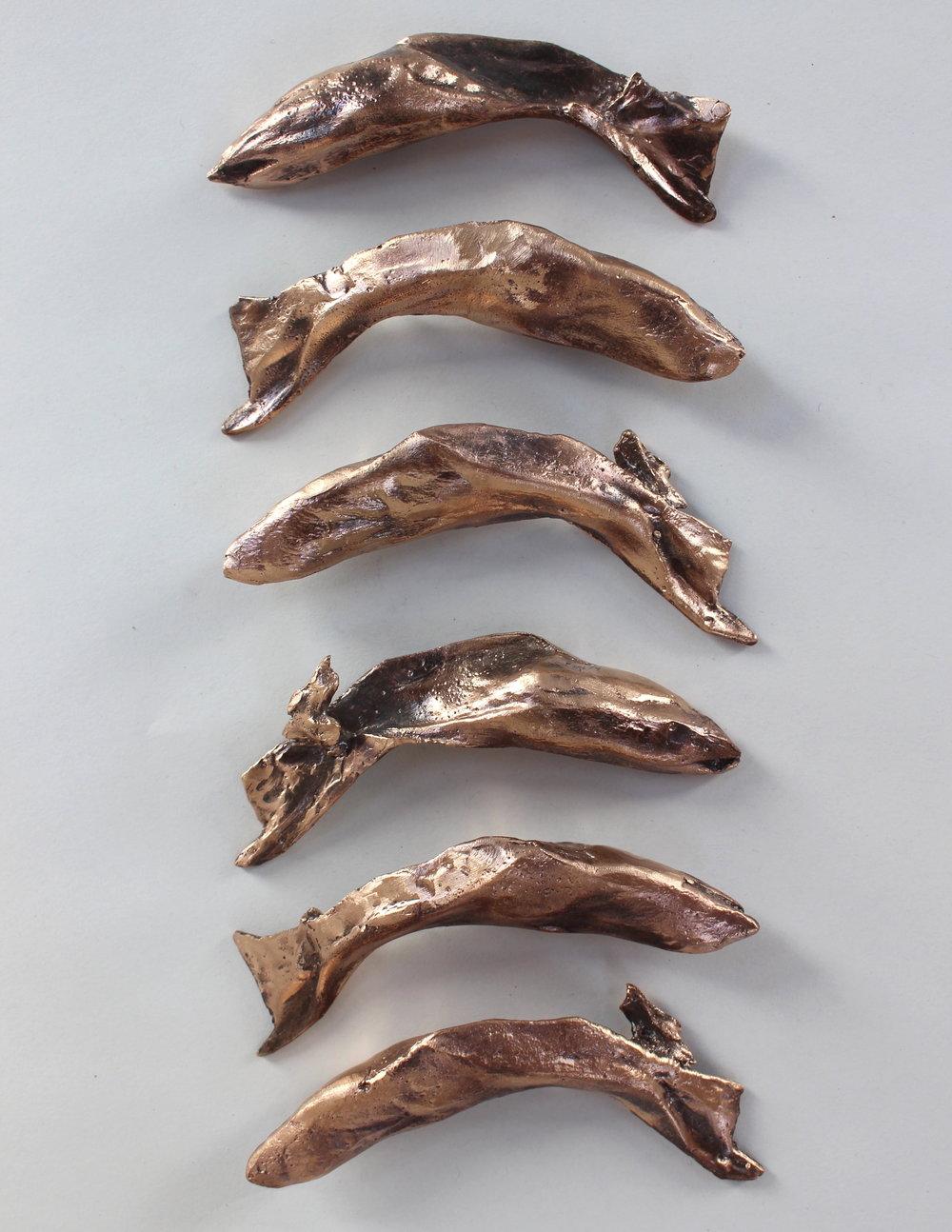 Haddock lug bones