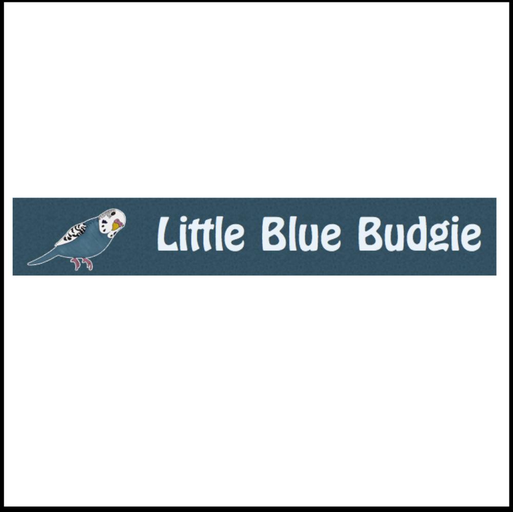 Little Blue Budgie  Totnes, Devon