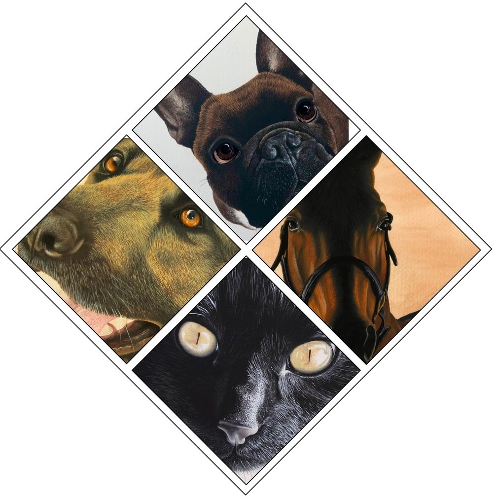 Animal Portrait Gallery Icon.jpg
