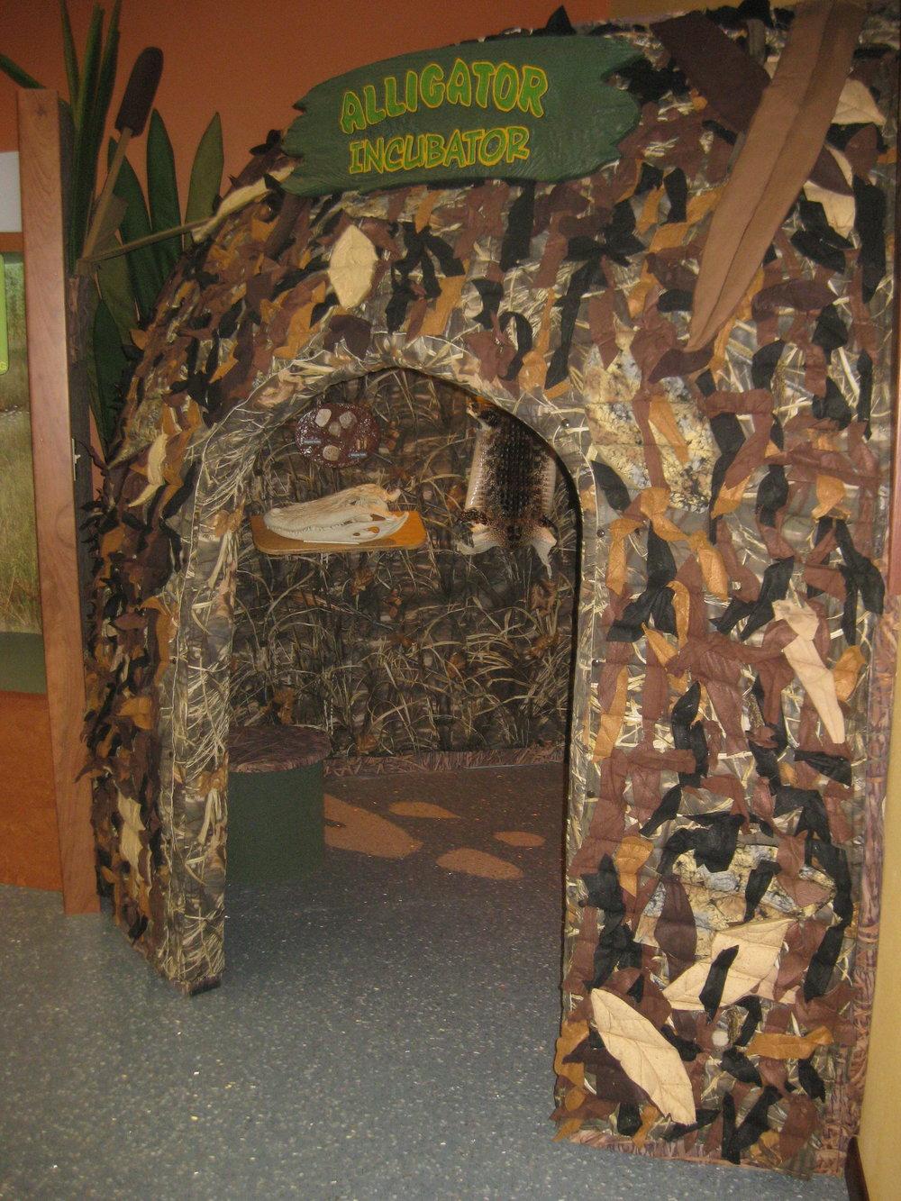 Tex Chen_12_Alligator Nest.JPG