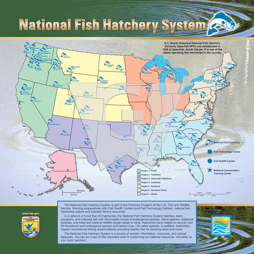 Nat Fish Hatchery System 3x3 Std WGI.jpg