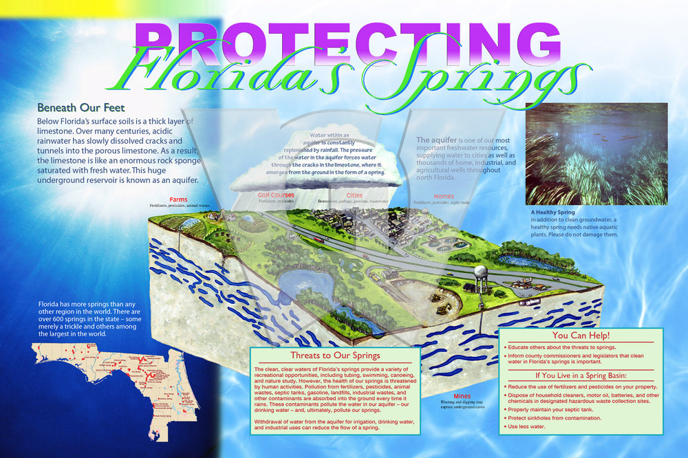 Protecting FLs Springs 3x2 WGI.jpg