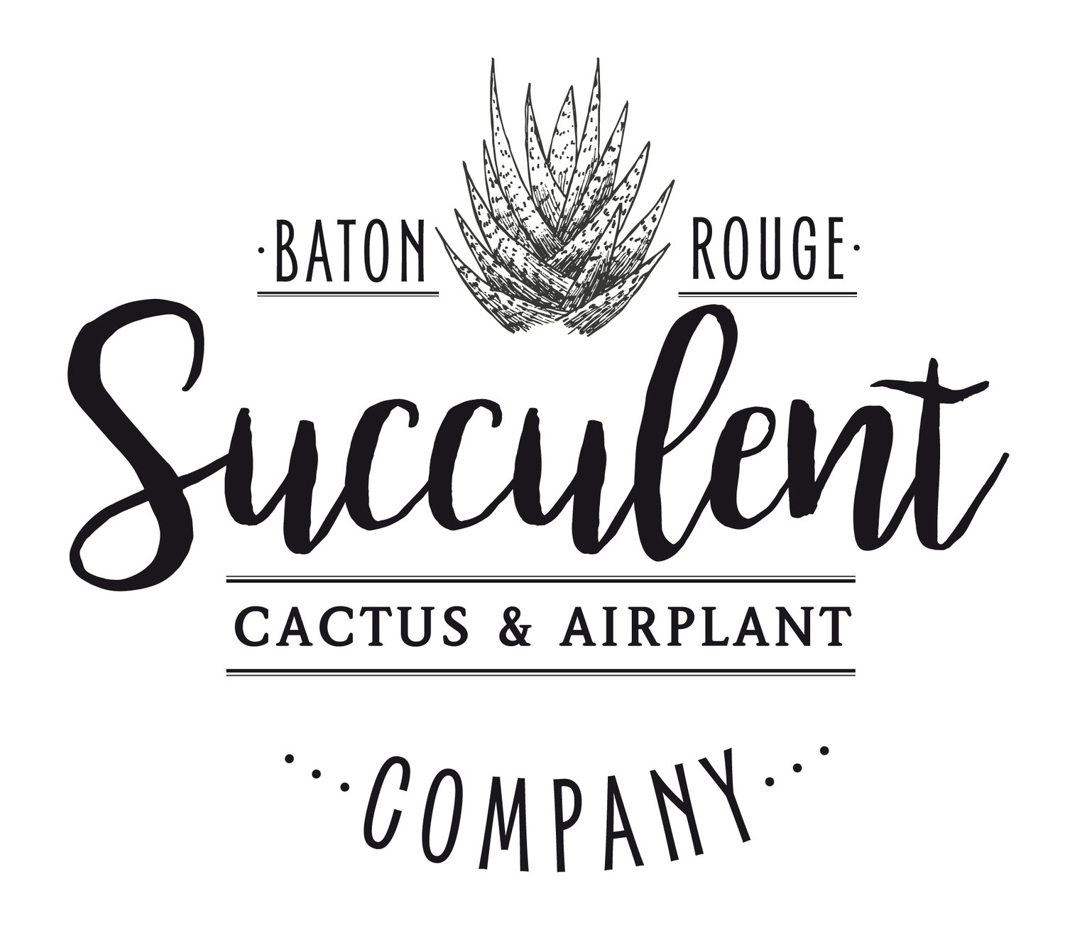 Baton Rouge Succulent Co. | succulents for sale