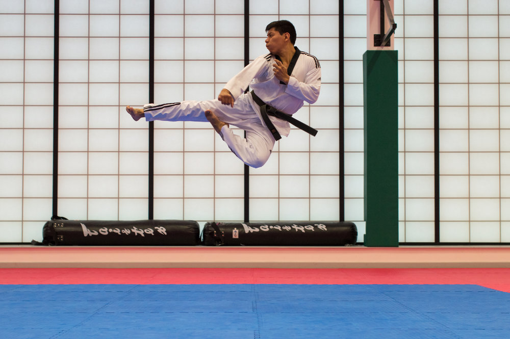 Martial Arts - Karate is more than punching and kicking. It involves age appropriate classes that develop character and skills. Adults will also find stress relief and the whole family will have improved focus, confidence, discipline, fitness, and self-defense.