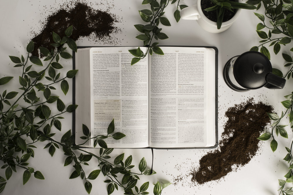 Brewing Herbs with Water - with Rebecca Luna