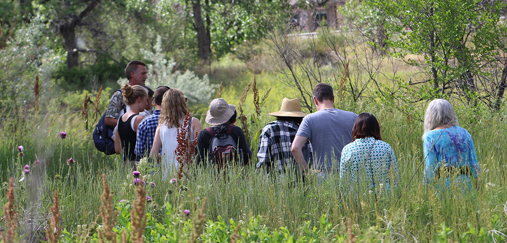Weekend Pass - Five Classes & Our Farm Dinner