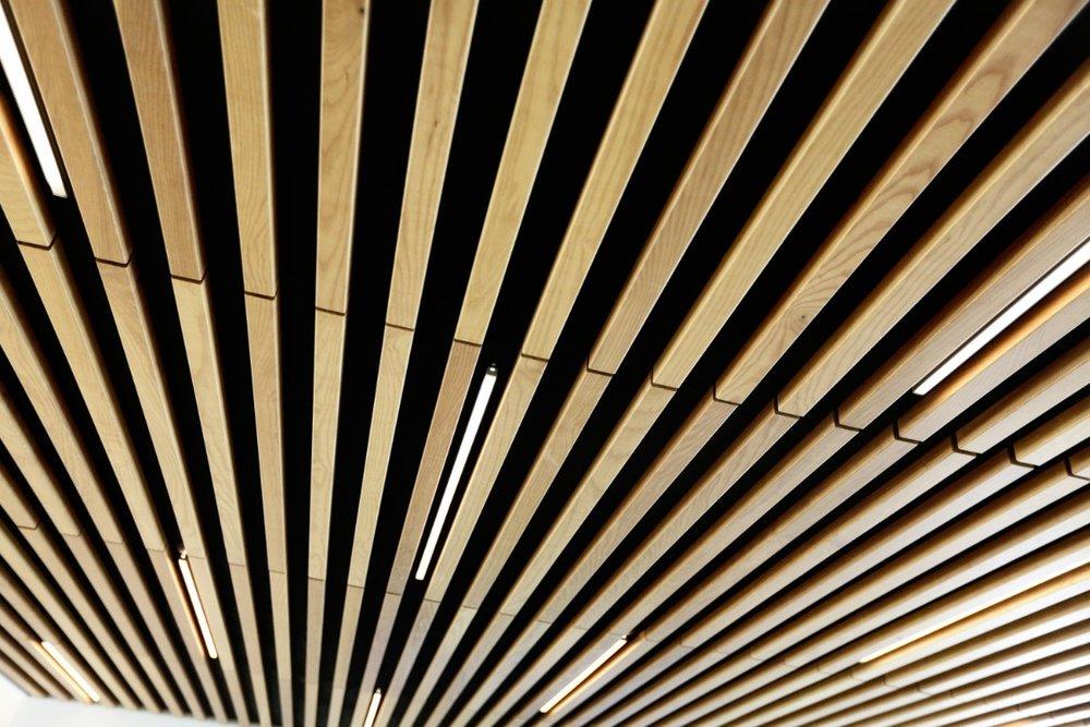 aerial-direct-ceilingclose.jpg