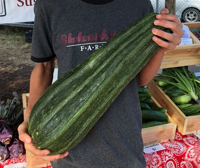 My son holding the ten and 1/2 pound zucchini. It was the first one that sold at the farmers market on Saturday.