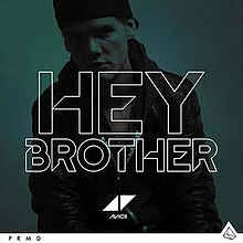 220px-Avicii_Hey_Brother.jpg