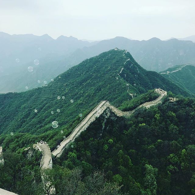 Yup. That's a pretty great wall.