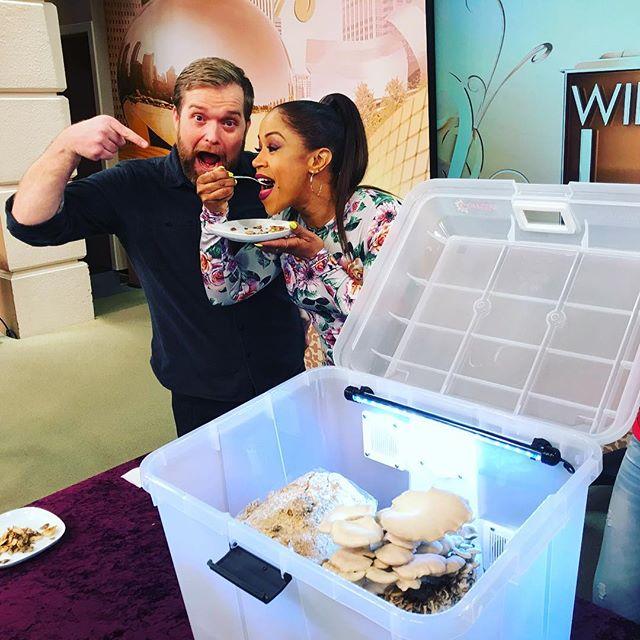 Mushrooms are a super food! Dig it! #mightyfungus #mushroombox #mushrooms
