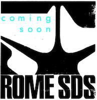 Rome snowboards logo