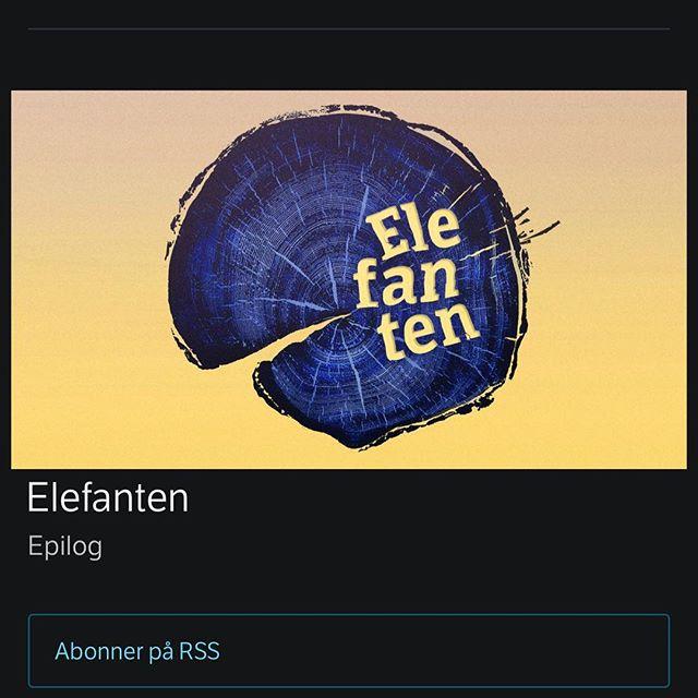 @karihesthamar er i gang med å lage ny sesong av Elefanten for NRK ❤️ Har du en historie du ønsker å dele - om noe usagt eller ugjort - ta kontakt med kari@svarttrost.no