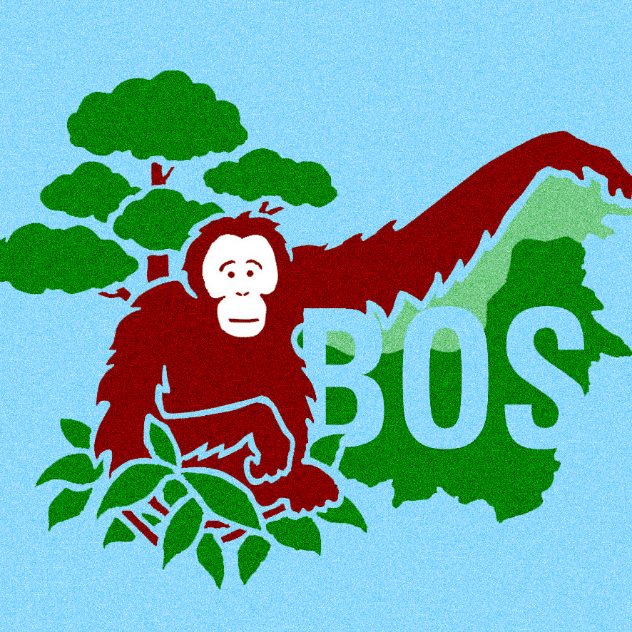 BOS FOUNDATION / ORANGUTAN PROTECTION FUNDRAISING CAMPAIGN