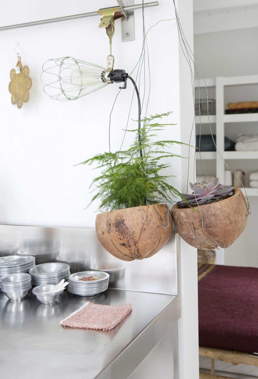 6-hangplanten