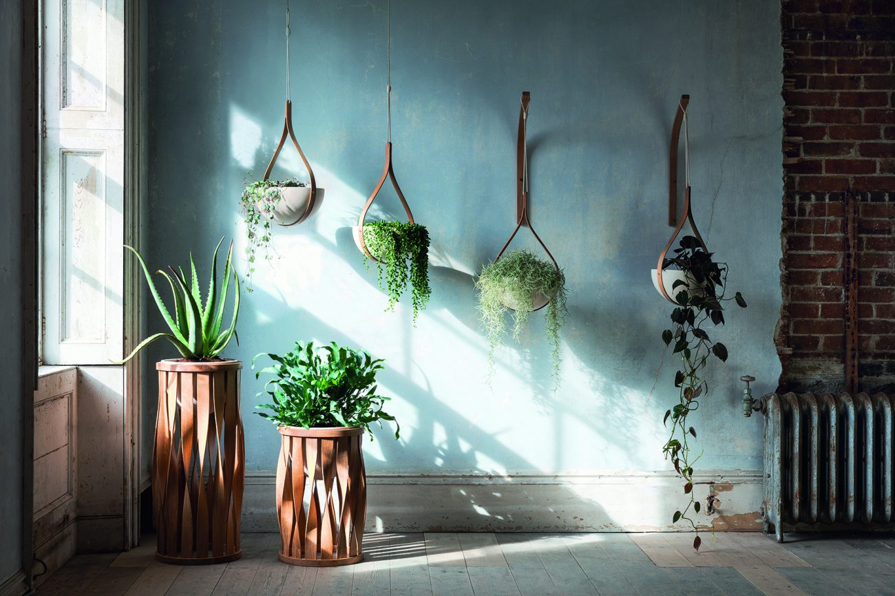 Tom Raffield Launches Exclusive New Biophilia Inspired Luxury Planters.