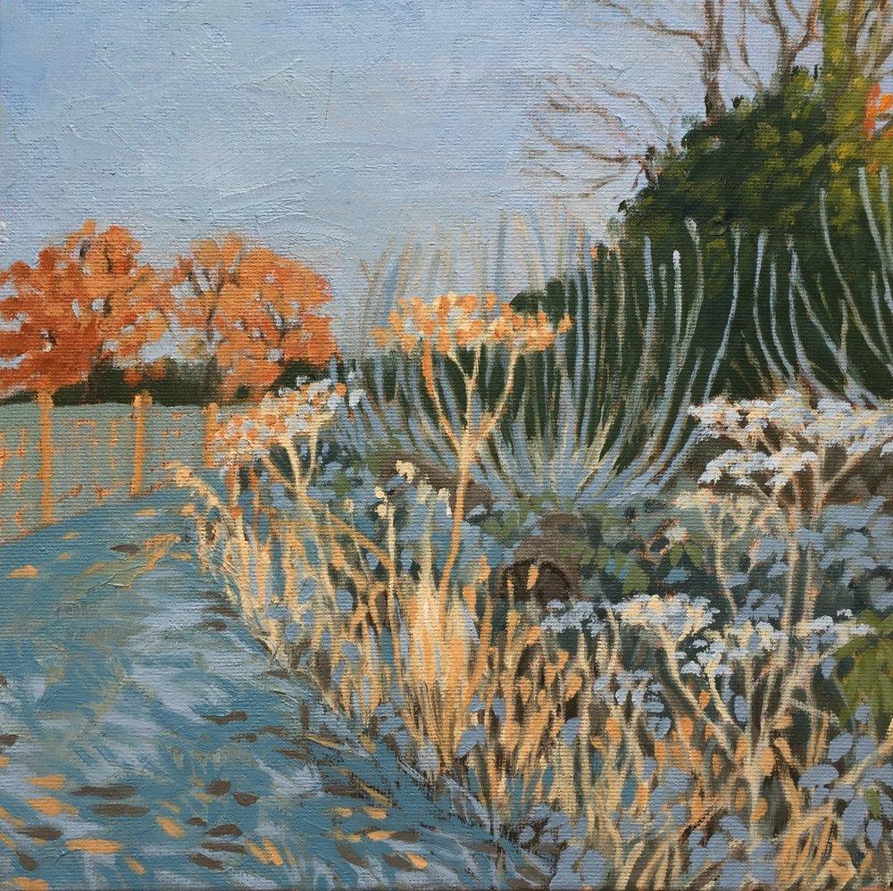 Fields in Frost (oils) 20x20cm.jpg
