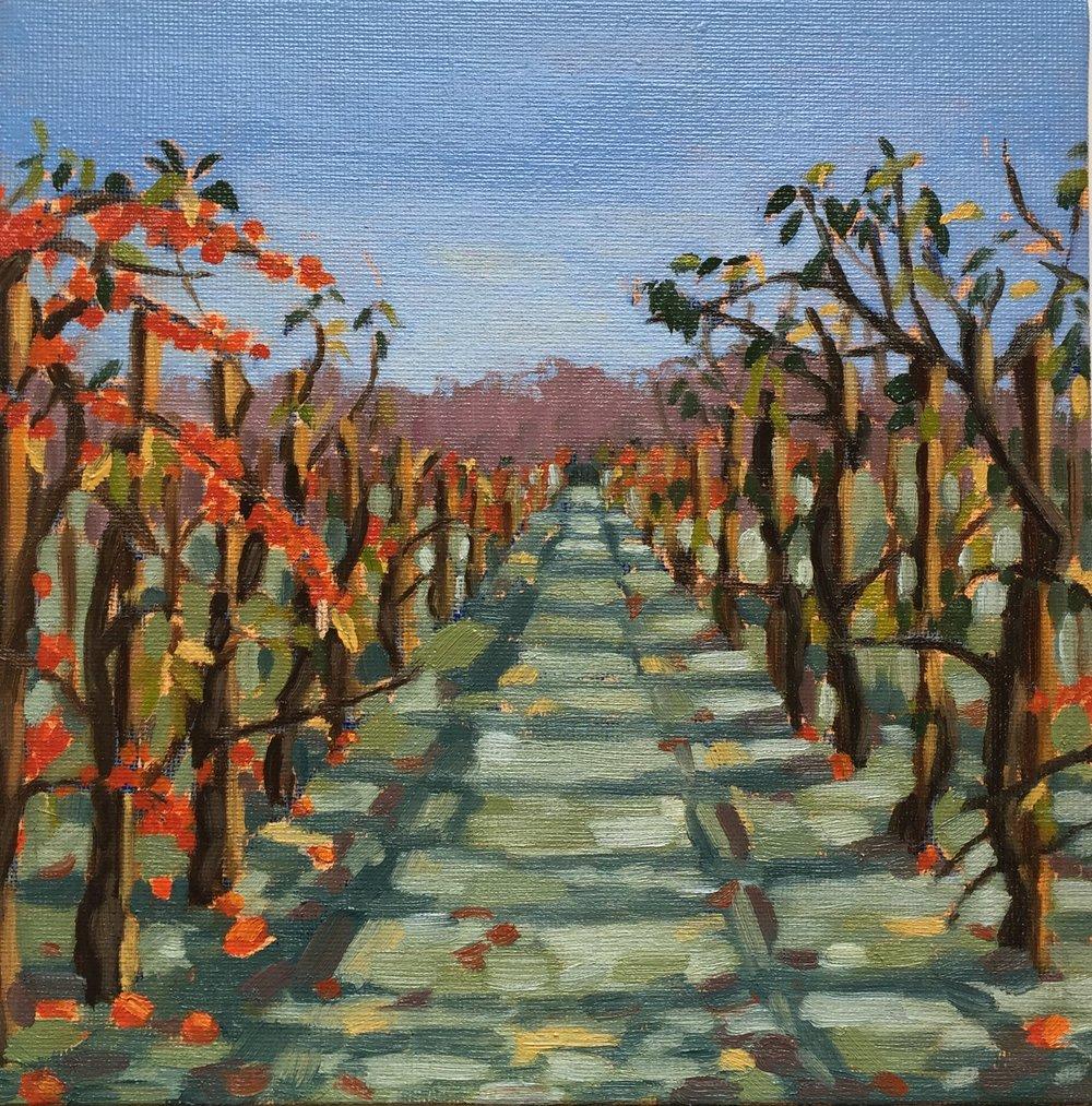 Winter Orchards (oils) 20x20cm.jpg