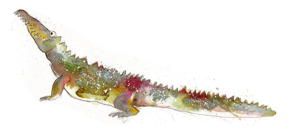 Solomon Crocodile
