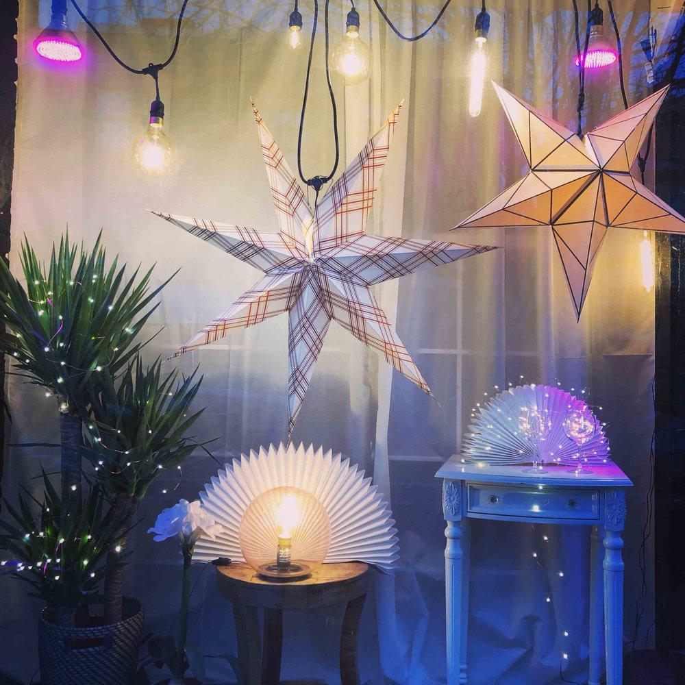 Festive window display