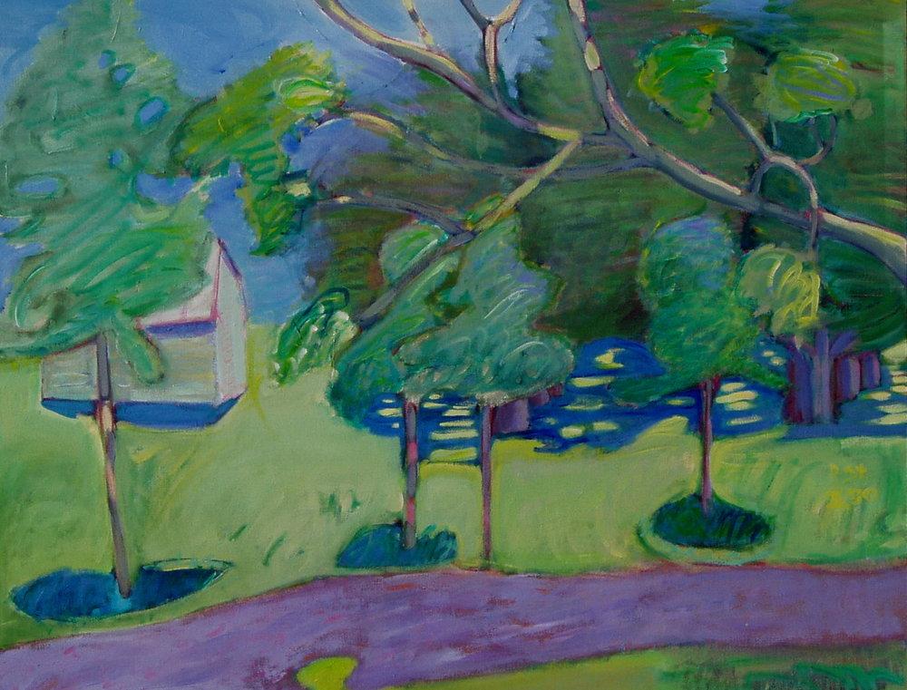 Barn and Pecan Trees 2.JPG