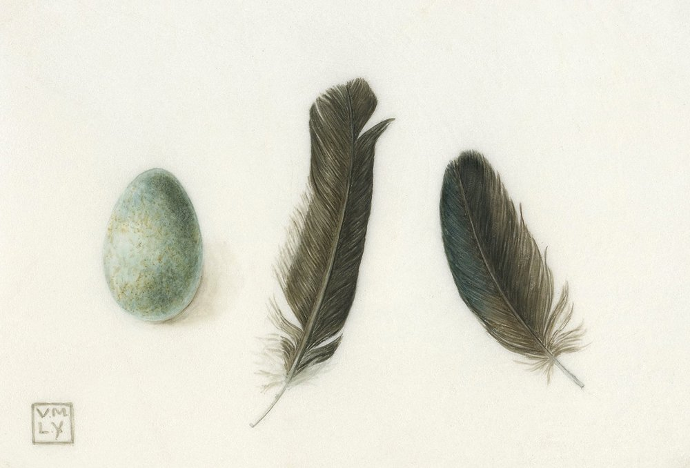 Egg, two feathers