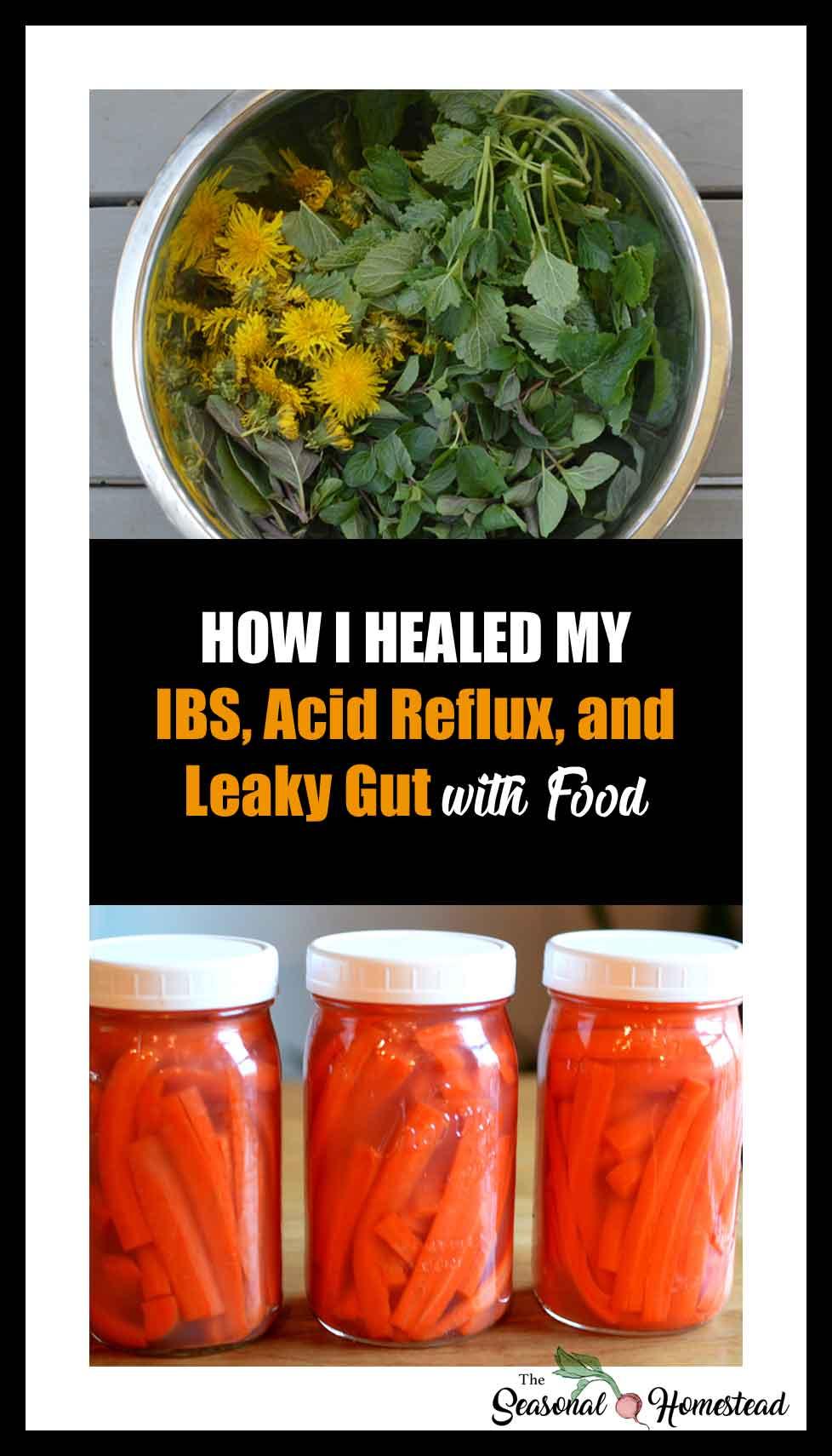 How-I-healed-my-IBS-Acid-Reflux-Leaky-Gut.jpg