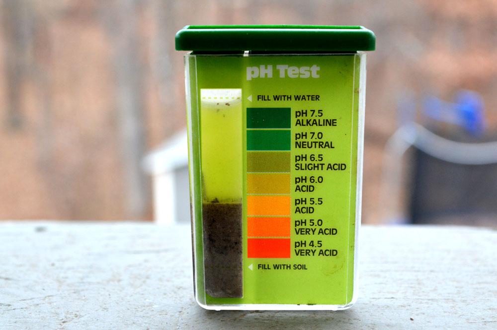 Pill Test.jpg