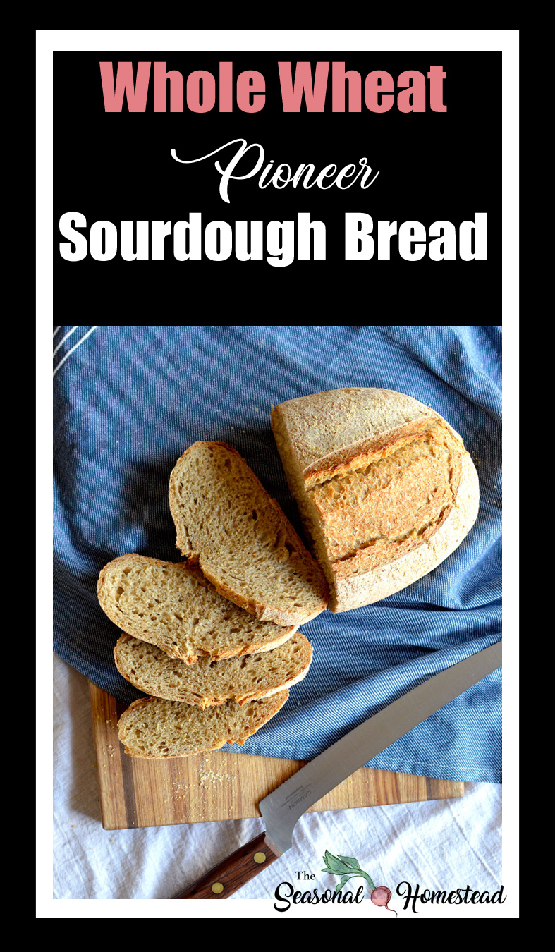 Whole Wheat Pioneer Sourdough Bread.jpg