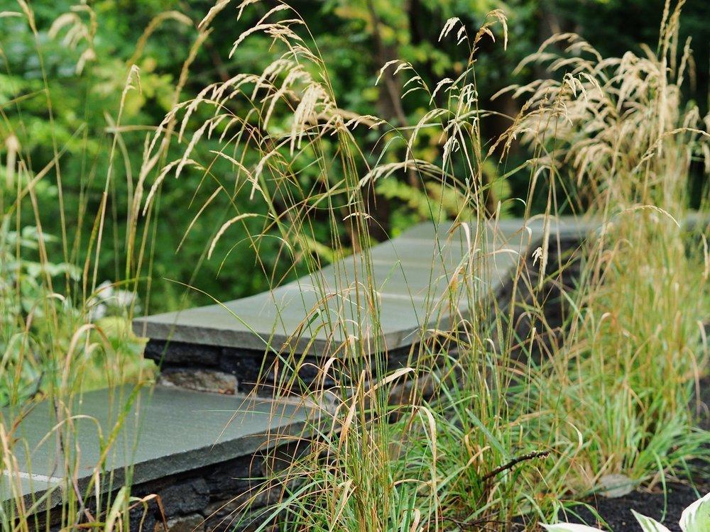 124Prospect_Wall_Grasses.jpg