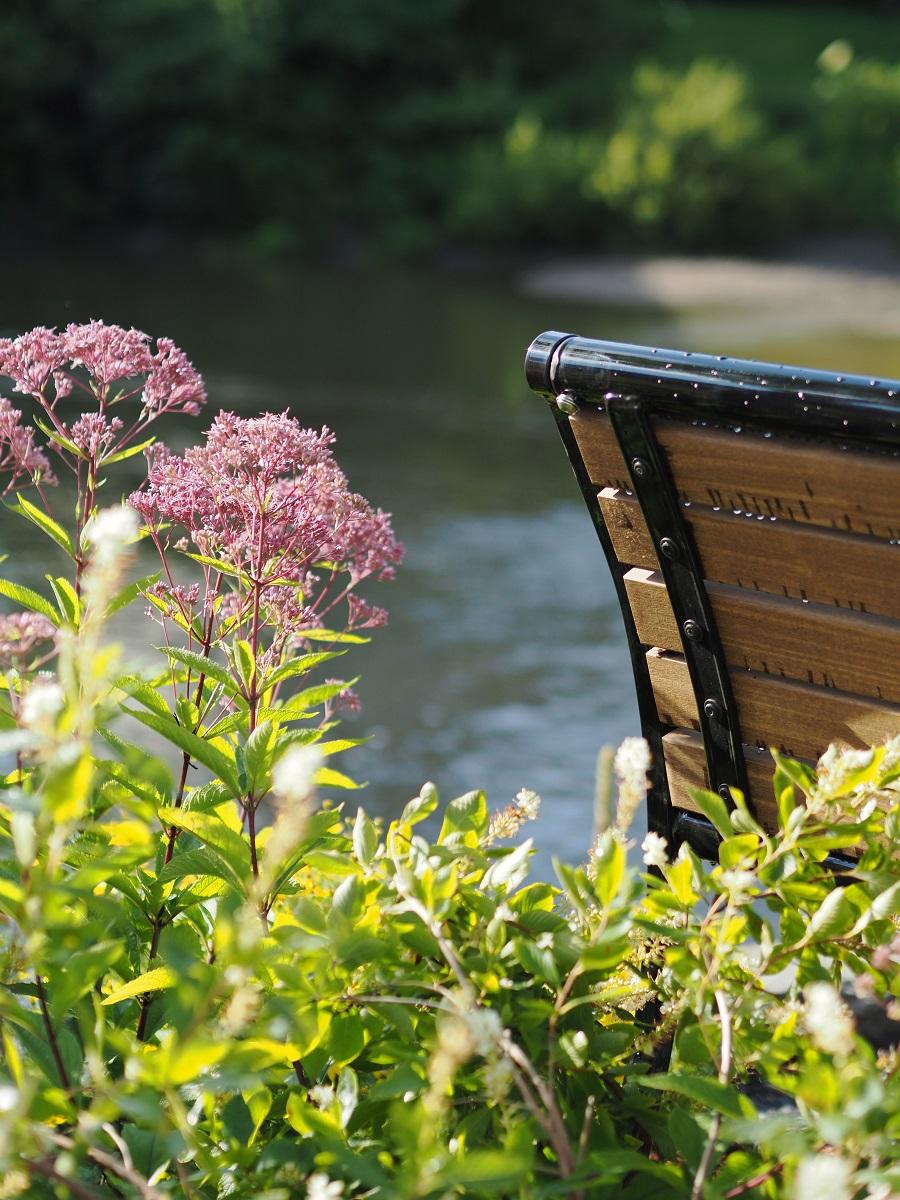 Bridge_Plants_Detail_4.jpg